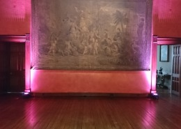cowdray house uplighter hire